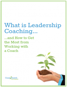 LeadershipCoachingEbook